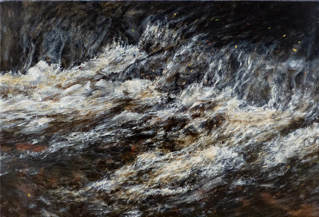 Fallen Leaves On A Dartmoor Stream